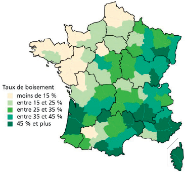French Biomass Industry